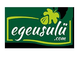 ege usülü logo